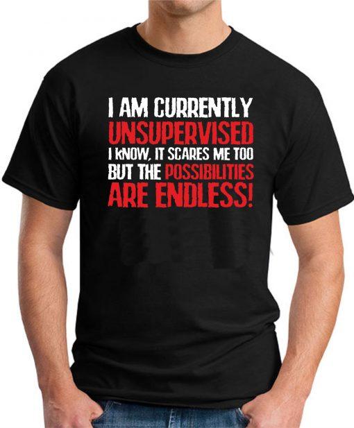 I AM CURRENTLY UNSUPERVISED Black