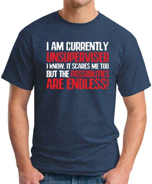 I AM CURRENTLY UNSUPERVISED Navy