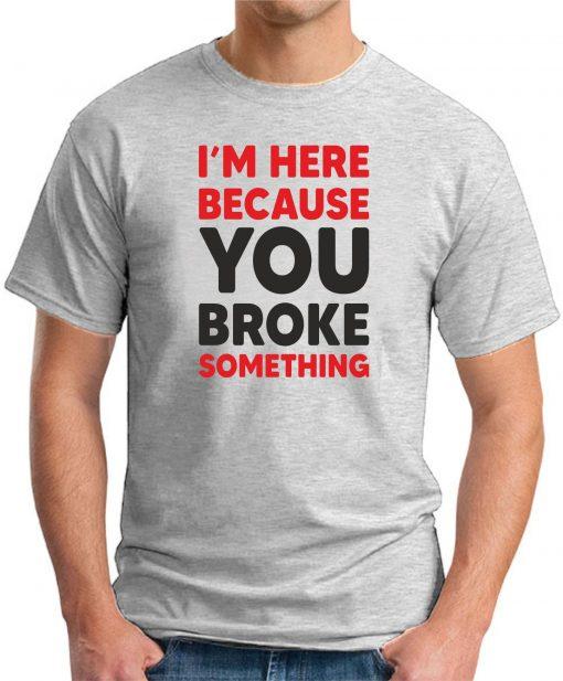 I'm here because you broke something ash grey