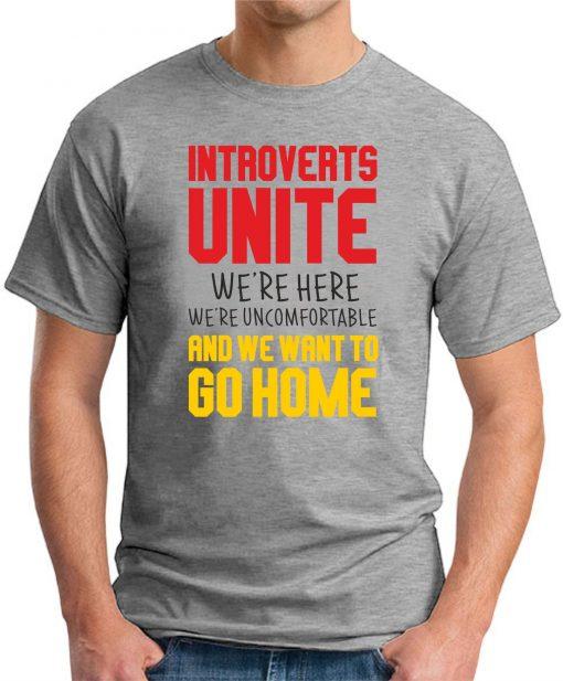INTROVERTS UNITE grey